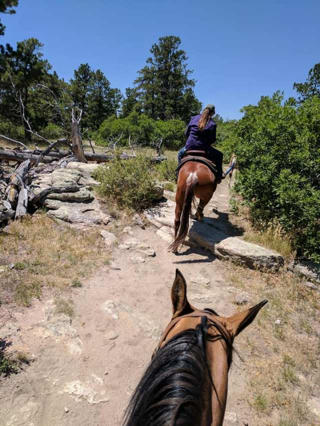 Trail Ride on Hal